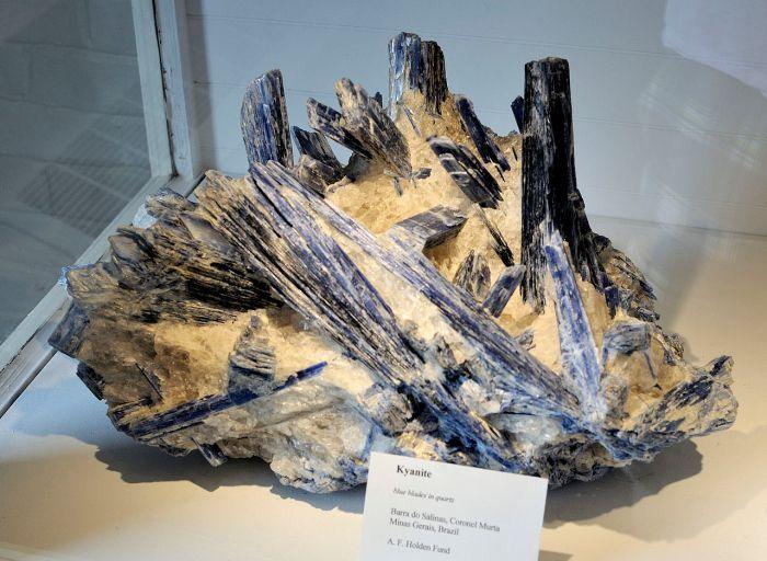 1280px-Harvard_Museum_of_Natural_History._Kyanite._Barra_do_Salinas,_Coronel_Murta,_Minas_Gerais,_Brazil_(DerHexer)_2012-07-20